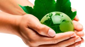 economia-y-ecologia