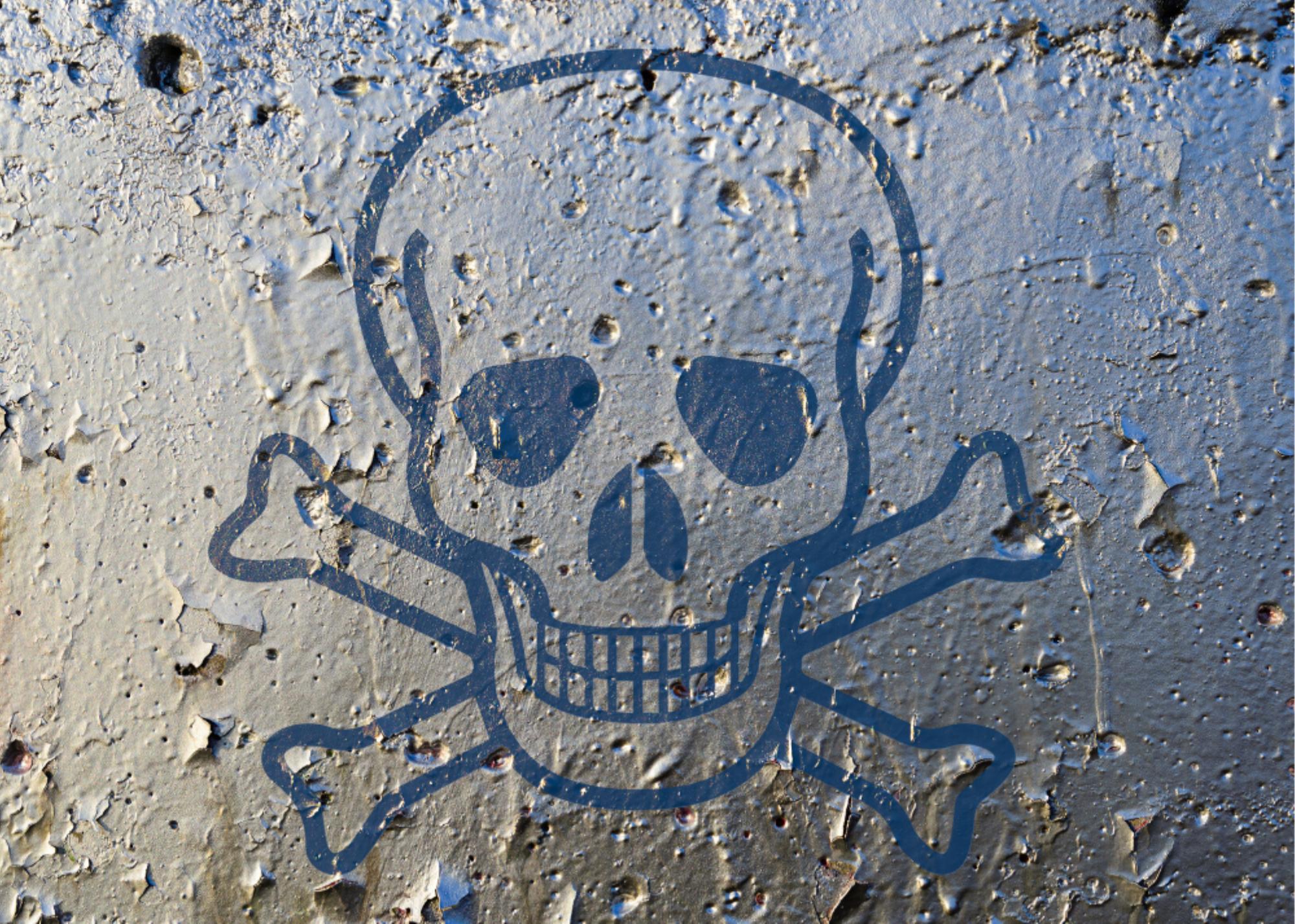 Intoxicación por plomo