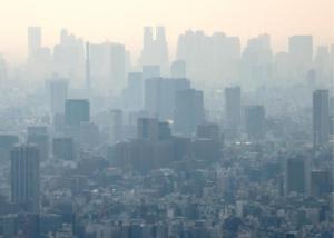 neutralidad de carbono